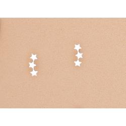 pendientes-estrella-trepadores-oasis-venta-directa