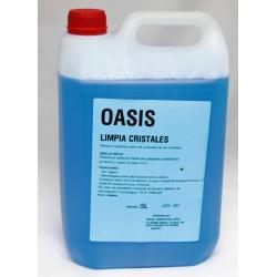 Limpiacristales 5 litros.